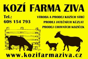 koza-obr-1